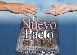 NuevoPactoLeyEz362627