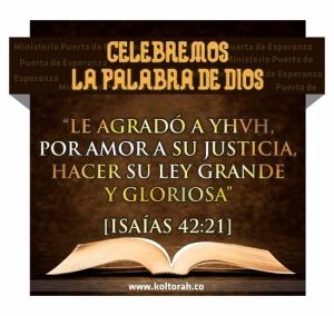 Celebremos_Torah_550