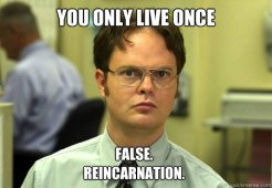 falsereincarnation